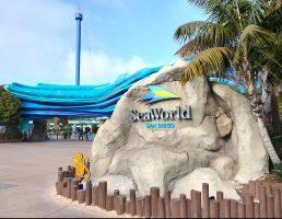 샌디에고 시월드 투어 SD Sea World